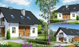 Hiša Borovnica
